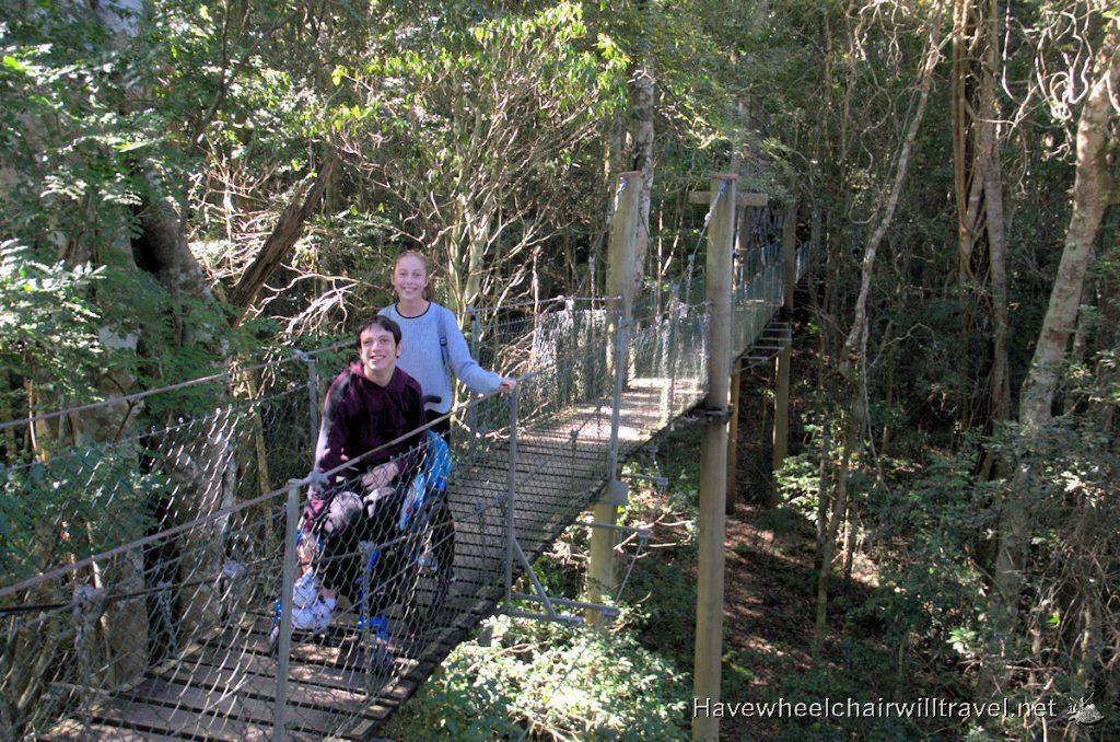 Tree Top Walk O'Reilly's Rainforest Retreat