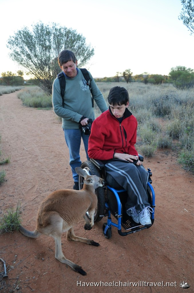The Kangaroo Sanctuary Alice Springs - wheelchair accessible activities Alice Springs - Have Wheelchair Will Travel