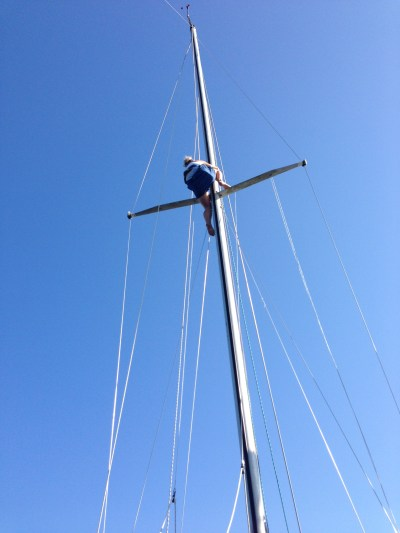 mast-1