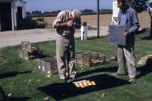 Jones photographing onions