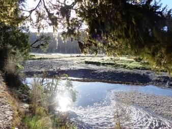 6 creek and mist