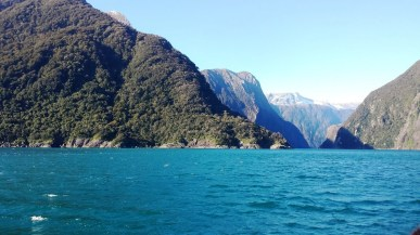milford-sound-the-color-of-the-water