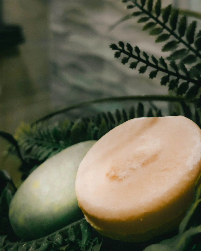 A sustainable shampoo and conditioner bar laying on green plants in a bathroom