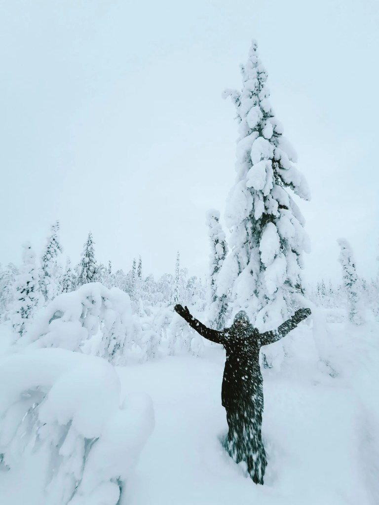 A woman hiking through the forest in Swedish Lapland in the winter.
