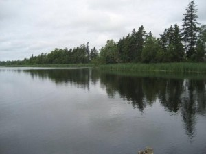 View of the Officer's Pond