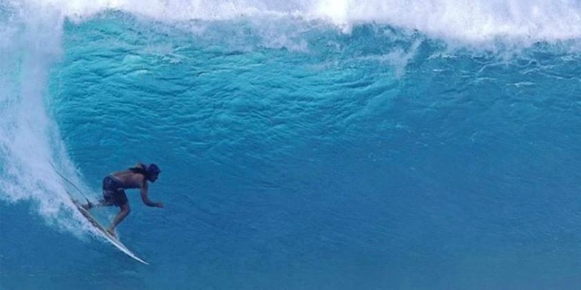 surfeur chanteur landon mcnamara