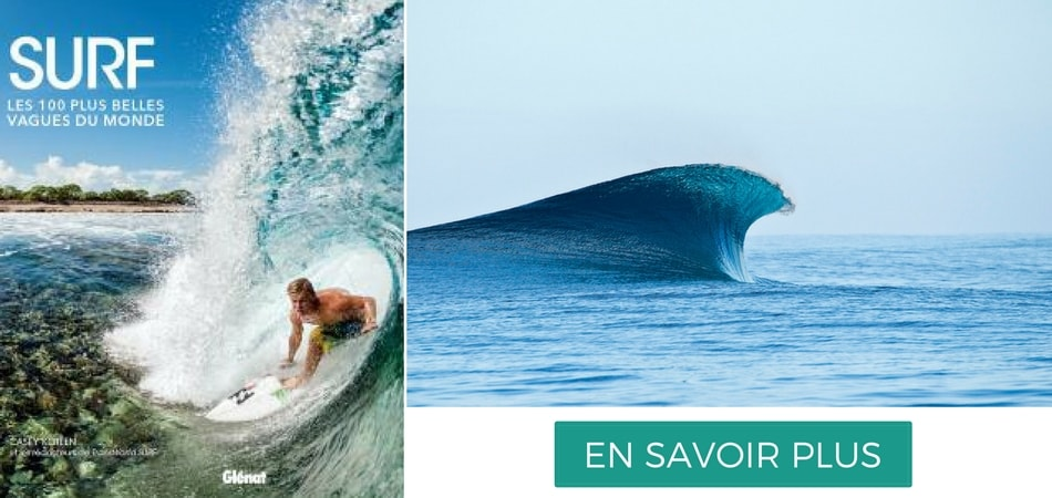 Livre les 100 plus belles vagues du monde