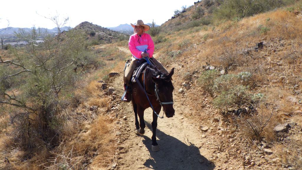 Horseback Trail Rides through the Sonoran Desert in Cave Creek Arizona