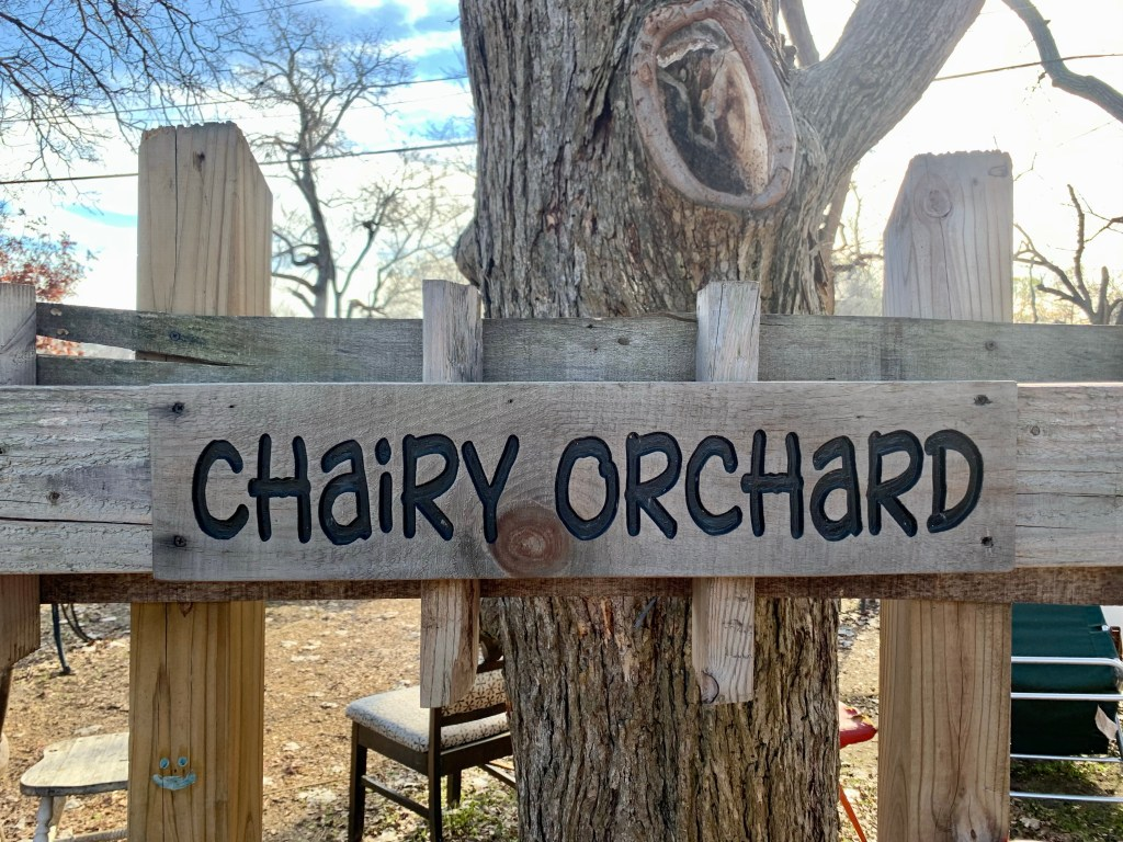 The Chairy Orchard in Denton Texas