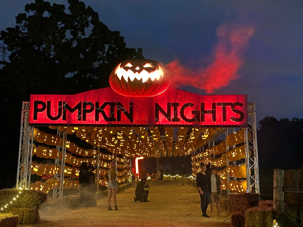 Pumpkin Nights in Arlington