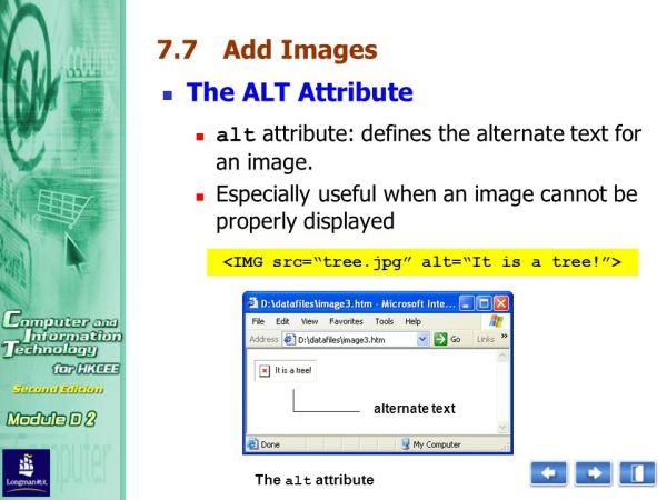 The Importance of the ALT Attribute - Havoc Digital
