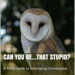 Can You Be… That Stupid?