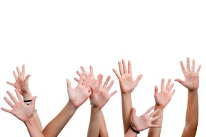 Close up of female hands and arms reaching out.Isolated on white background.