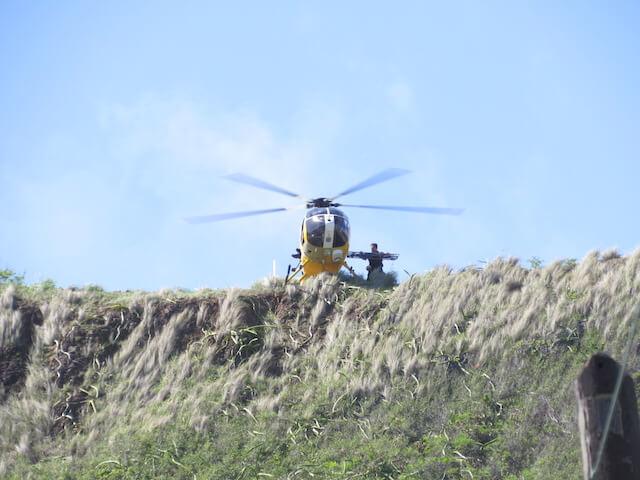 ラニカイピルボックス救助