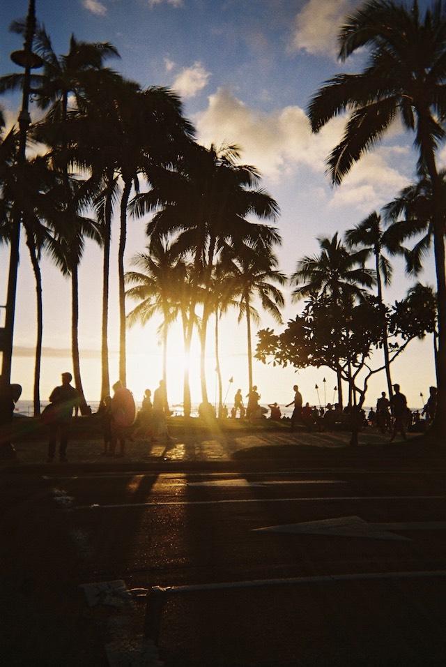 ハワイ美女177_Shuri