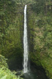Akaka Wasserfall Hawaii