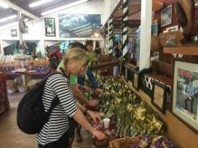 Stop der deutschen Iinselrundfahrt auf Oahu - Makademia Nuss Farm