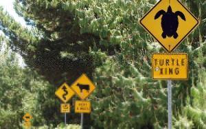 Regeln und Gesetze in Hawaii
