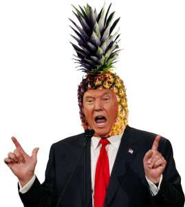 Trump in Hawaii