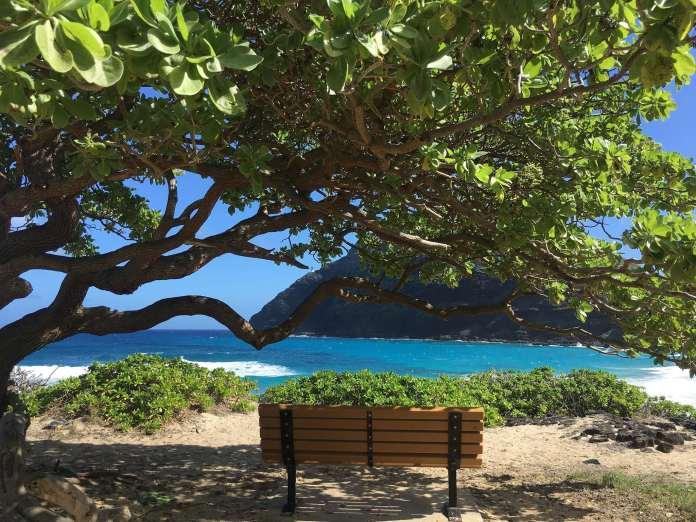 Sitzmöglichkeit im Makapu'u Beach Park