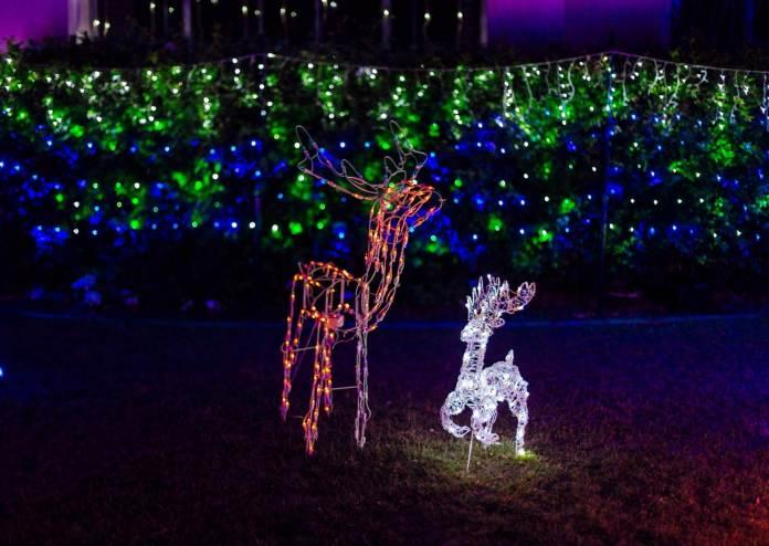 Weihnachten in Hawaii – Weihnachten bei den Reimanns