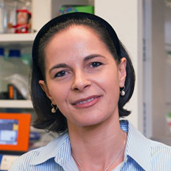 Yasmine Belkaid, National Institute of Allergy and Infectious Diseases (NIAID)