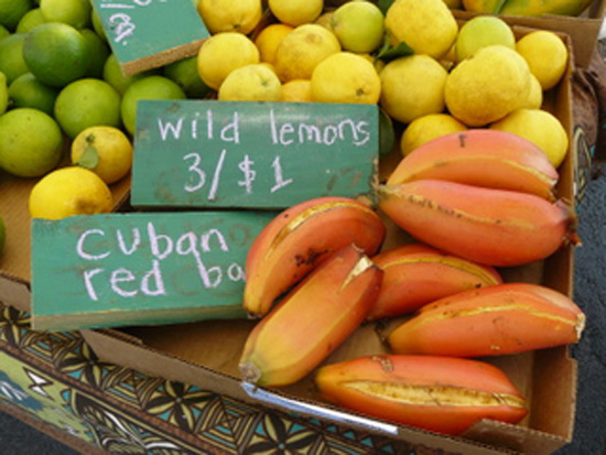 Fresh locally grown produce at the Keauhou Farmers Market. (Photo special to Hawaii 24/7 by Colin Gould)
