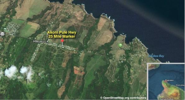 Akoni Pule Highway in North Kohala, 25 Mile Marker.