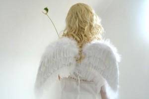 6天使フリー