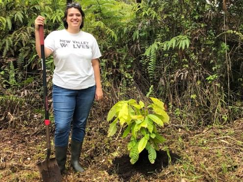 Asia Olsen, shovel, cacao tree
