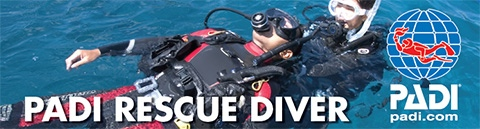 https://i1.wp.com/hawaiiecodivers.com/wp-content/uploads/2014/11/rescue_banner1.jpg