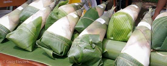 Freshly harvested shoots in Thai farmers market