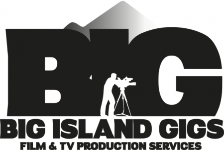 Big Island Gigs logo