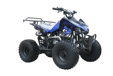 Coolster-125cc-Auto-3125CX2