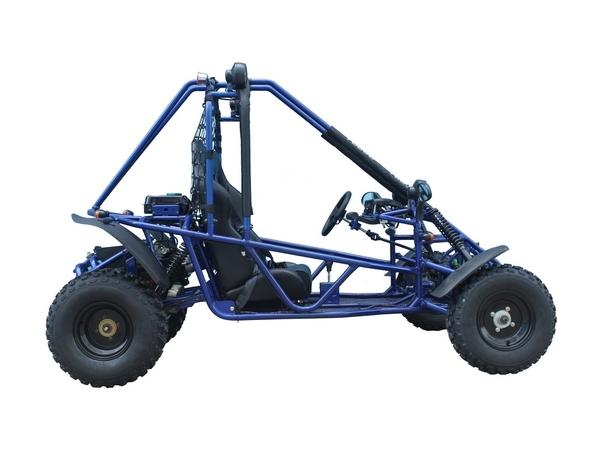 Tao Motor Targa Go Kart Automatic