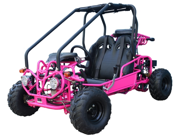 Tao Motor GK110 GoKart