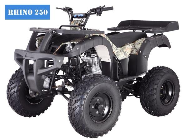 Tao ATV Rhino250
