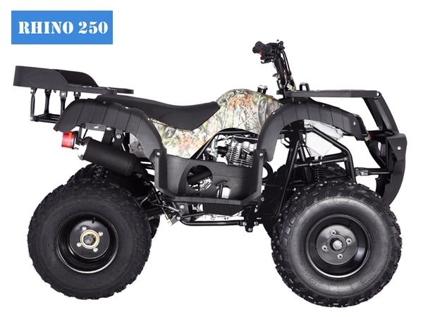 Tao Motor Rhino250 ATV