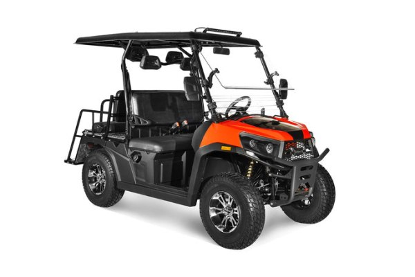 ODES Gas Golf Cart - 4 passenger - EFI - Automatic