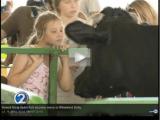 Hawaii State Farm Fair location move to Windward Oahu a success via @KHONNews