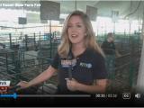 Erie News Now: 55th Annual Hawaii State Farm Fair