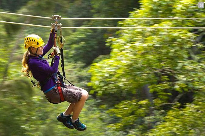 Big Island Kohala Canopy Zipline Adventure on Hawaii