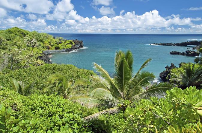 Full-Day Maui Tour: Road to Hana Tour on Maui