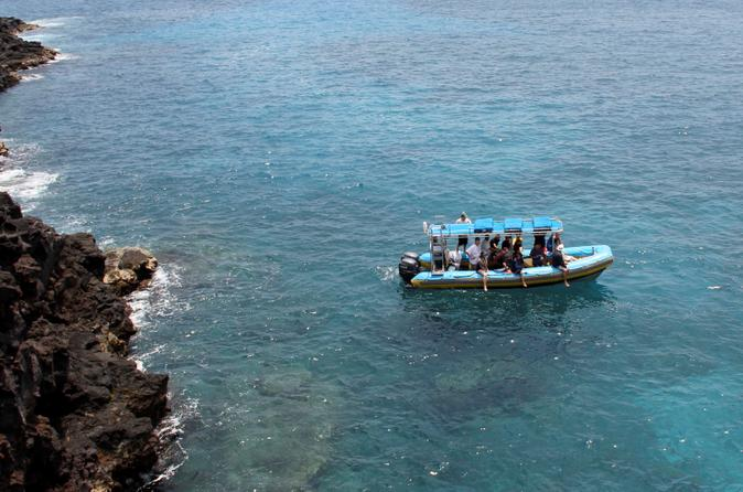 Hawaii Combo: Wild Dolphin Swim and Kealakekua Bay Snorkeling on Hawaii
