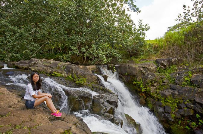Kauai Waterfalls Tour