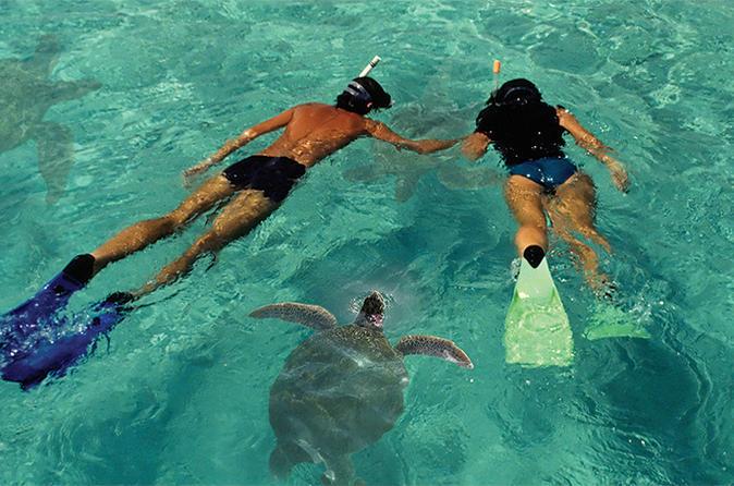 Lanai Island Dolphin and Snorkel Cruise from Maui on Maui