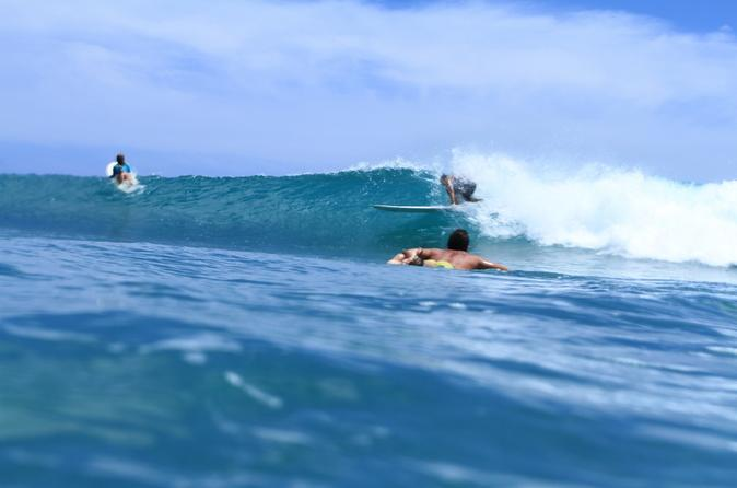 North Shore Surfing Tour on Oahu