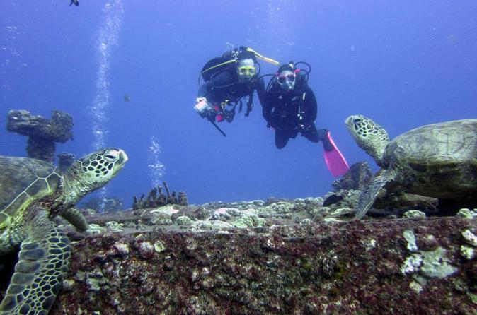 Oahu Certified SCUBA Adventure From Kewalo Basin on Oahu
