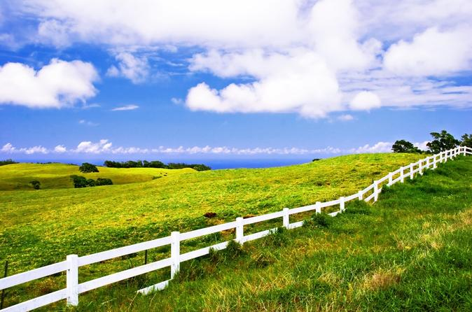 Private Tour: Big Island Organic Farms on Hawaii
