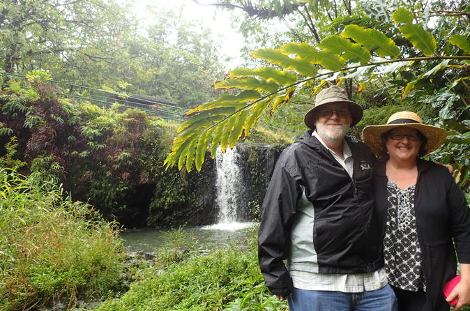 Road to Hana Tour: Swim in Waterfalls With Your Own Private Guide on Maui